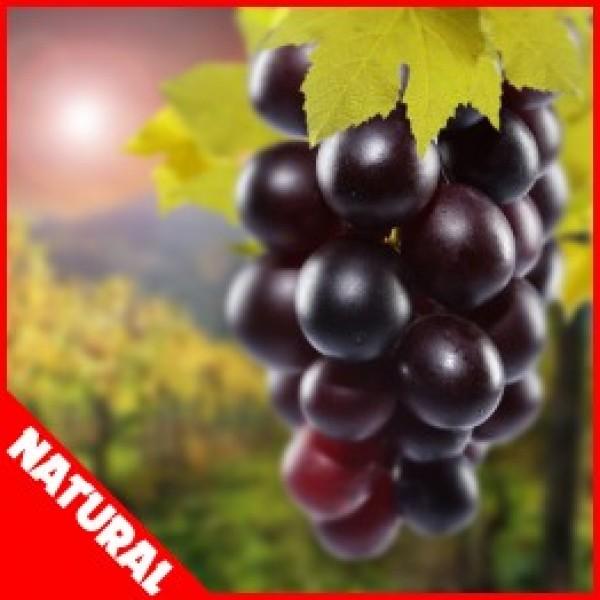 FW Grape (Natural) - 10ml