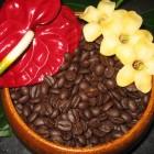 PerfumersApprentice - Coffee Espresso - 10 ml